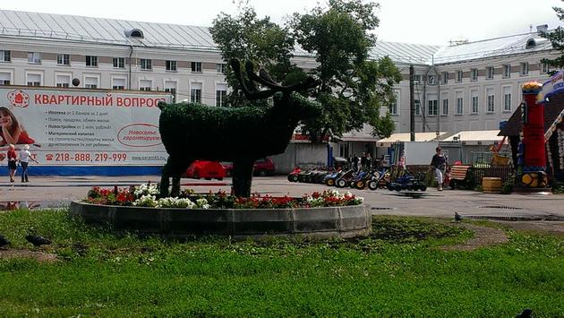 Северный олень в центре Александровского сада