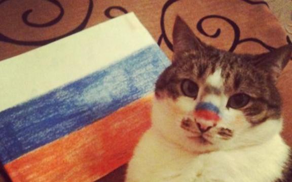 Самый знаменитый кот-болельщик на Олимпийских играх